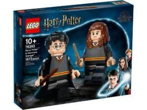 lego 76393 harry potter et hermione granger